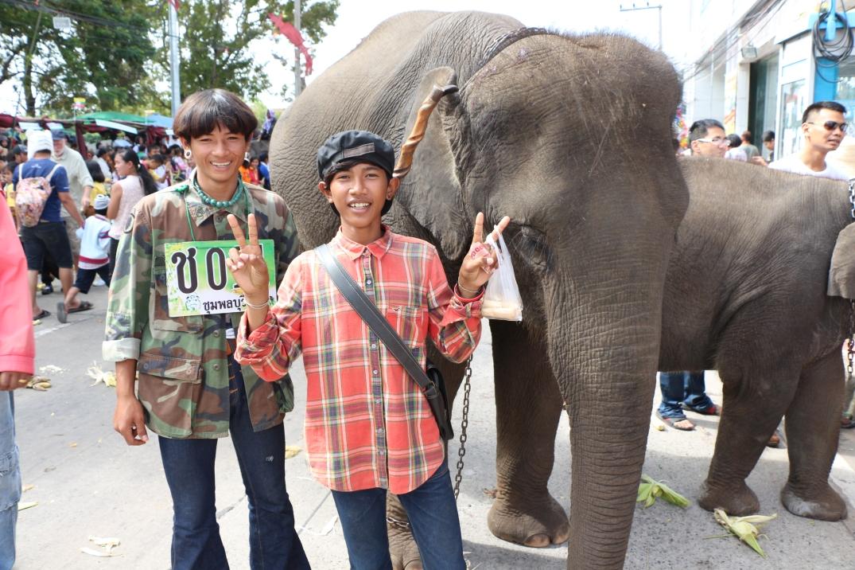 2014-11-14 Surin Elephant Welcome Feast 460