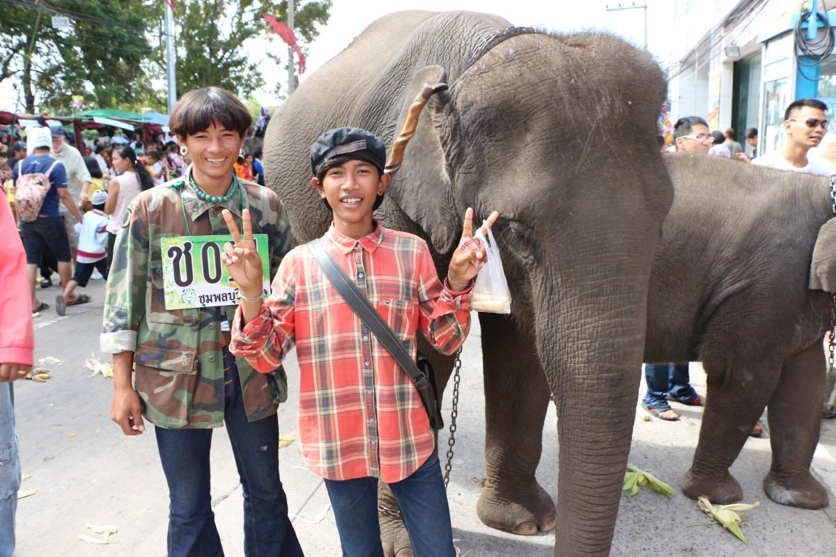 Elephant Festival Preview