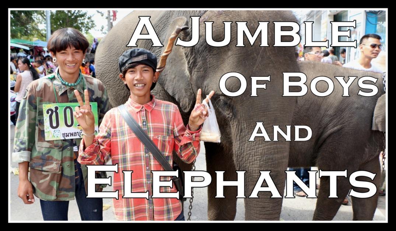 2014-11-14 Surin Elephant Welcome Feast 460 yt thumb